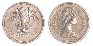 一枚英磅硬币 库存照片
