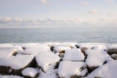 安大略湖冬天岸  图库摄影