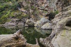 岩石池 库存照片