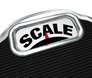 在测量工具设备测量的重量的标度词 库存图片