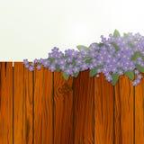 Флористическая конструкция Стоковая Фотография RF