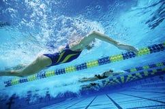 实践在水池的游泳队 库存照片