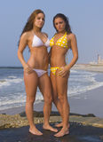 бикини пляжа Стоковая Фотография RF
