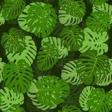 生叶棕榈无缝的样式 免版税库存图片