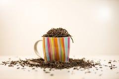有匙子的茶杯 免版税库存照片