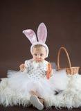 逗人喜爱的小的兔宝宝用红萝卜 免版税库存图片