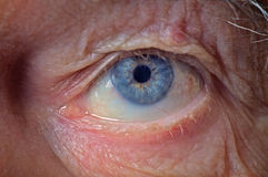 老人眼睛 免版税库存照片