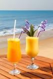 菠萝、芒果和西番莲果汁 免版税库存图片
