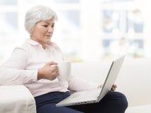 研究膝上型计算机的微笑的资深妇女 免版税图库摄影