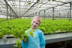 拿着莴苣的年轻男孩自温室 图库摄影