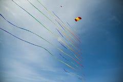 与许多尾巴的风筝 免版税库存照片