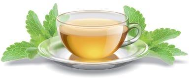 有甜叶菊叶子的茶杯 库存图片