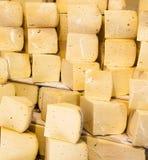 乳酪 库存图片