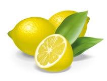柠檬构成 免版税库存图片