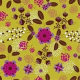 花卉无缝的样式 库存图片