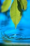 голубая вода Стоковое Фото