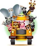 在黄色校车的滑稽的动物 库存照片