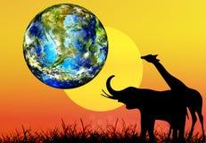 地球日 库存照片