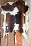 母牛皮肤。 免版税图库摄影