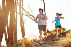 Υγιές τρέξιμο ιχνών Στοκ φωτογραφίες με δικαίωμα ελεύθερης χρήσης