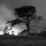 在雹暴前的剧烈的天空 免版税库存照片