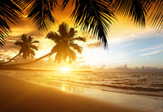 Заход солнца на пляже моря Стоковая Фотография RF