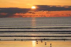 在林恩海滩的日出 库存照片