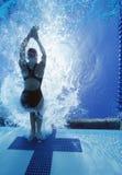 女性游泳者背面图在竞争中 库存照片