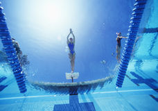 Άποψη της θηλυκής κατάδυσης κολυμβητών στην πισίνα Στοκ φωτογραφία με δικαίωμα ελεύθερης χρήσης