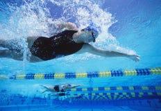游泳在水池的专业女性游泳者 库存图片