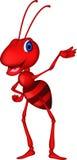逗人喜爱红色蚂蚁动画片提出 免版税库存照片