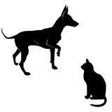 狗和猫剪影。 库存照片