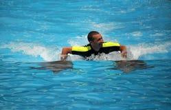 游泳与海豚 免版税库存图片