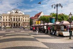 在斯洛伐克国家戏院,布拉索夫前面的人们 免版税库存照片