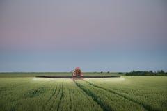 拖拉机喷洒的麦子 免版税库存图片