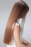长的头发。有健康布朗头发的美丽的妇女。 库存照片