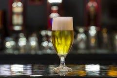 在酒吧的啤酒杯 免版税库存照片