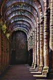 Руины аббатства фонтанов Стоковые Изображения RF