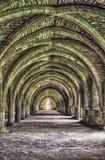 Руины аббатства фонтанов Стоковое Изображение
