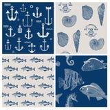 Рыбы и морской комплект предпосылки Стоковые Фотографии RF