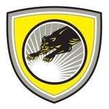 豹大猫咆哮冠 免版税库存照片