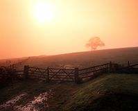 有薄雾的早晨,斯塔福德郡,英国。 库存图片