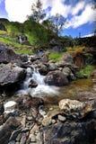 Падения воды Стоковые Фото