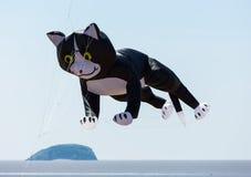 在风筝节日威斯顿超级母马萨默塞特的猫 免版税库存照片