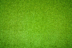Предпосылка зеленой травы Стоковая Фотография RF