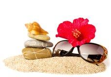 Όμορφο εξωτικό κοχύλι, πέτρες, κόκκινα λουλούδι και γυαλιά Στοκ εικόνα με δικαίωμα ελεύθερης χρήσης