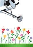 Το πότισμα μπορεί και λουλούδια Στοκ φωτογραφία με δικαίωμα ελεύθερης χρήσης