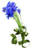 蓝色玉米开花在花瓶的花束 免版税库存照片