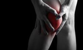 在膝盖的痛苦。做在病的膝盖的按摩医生按摩在红色 免版税库存照片