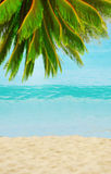 在海岛上的晴朗的热带海滩 库存图片